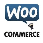 Build an Online Store with WooCommerce